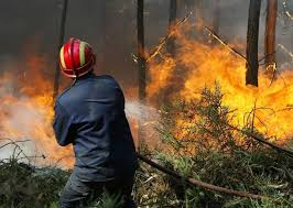 Zakon o zaštiti od požara